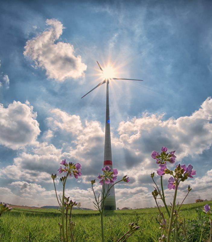 Escogit renewable eolic energy
